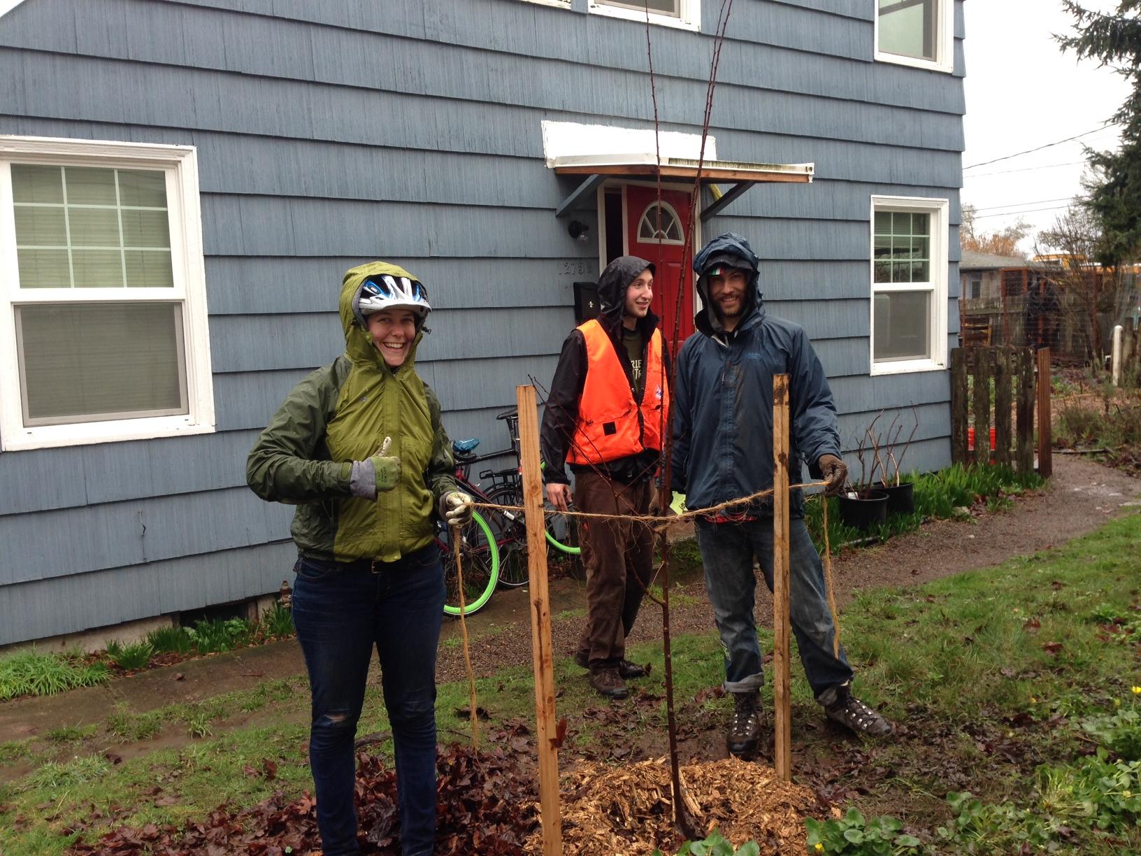 Bike planting in Eugene