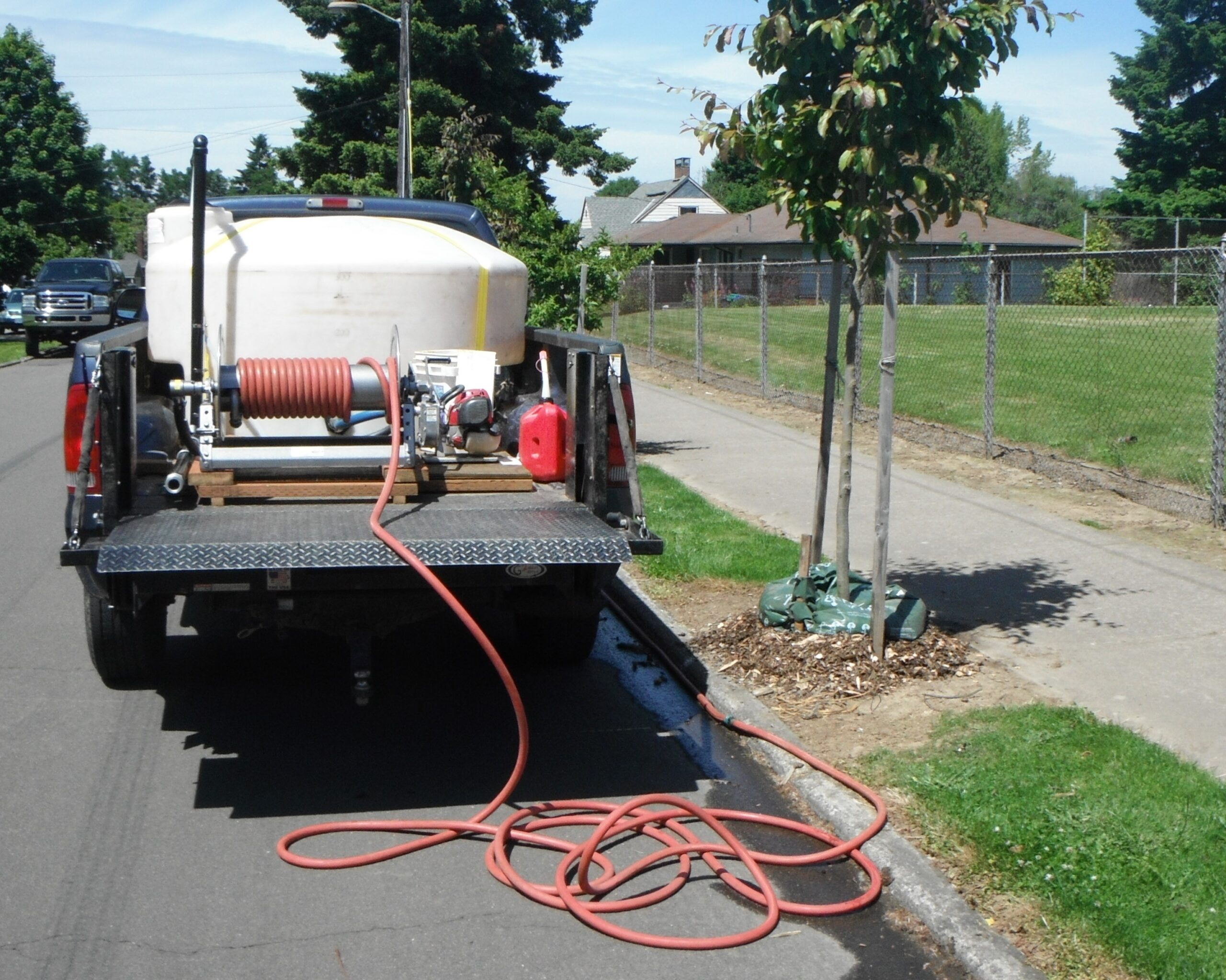 2-year Watering Service (1st tree)