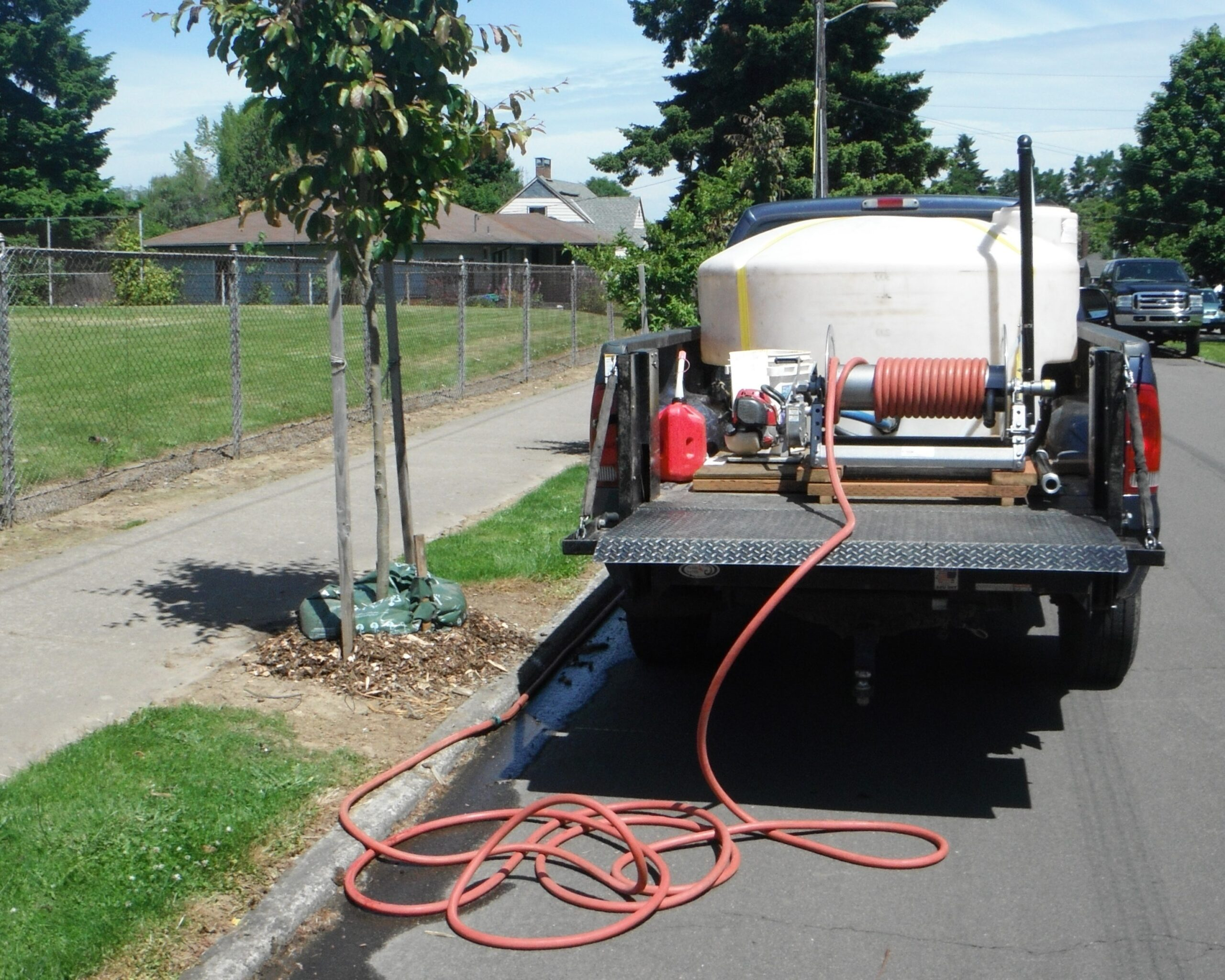 2-year Watering Service (ea. additional tree)